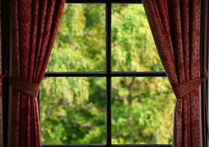 部屋の窓から見える緑の写真素材 [FYI04232023]