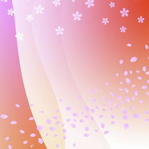桜吹雪模様のイラスト素材 [FYI04233684]