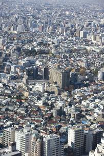 新宿 都庁舎からの展望のイラスト素材 [FYI04236369]