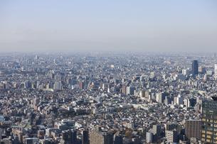 新宿 都庁舎からの展望のイラスト素材 [FYI04236370]