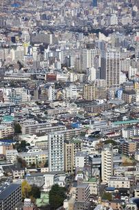 新宿 都庁舎からの展望のイラスト素材 [FYI04236376]