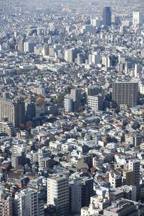 新宿 都庁舎からの展望のイラスト素材 [FYI04236388]
