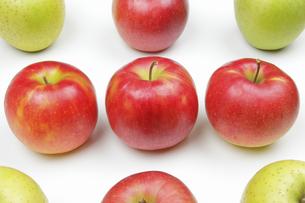 りんご3種の写真素材 [FYI04236909]