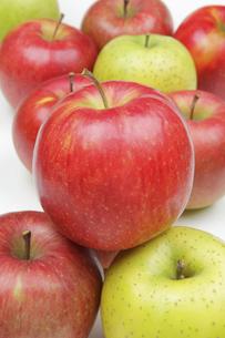 りんご3種の写真素材 [FYI04236913]