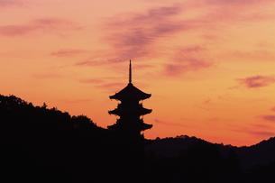 備中国分寺の朝の写真素材 [FYI04237134]