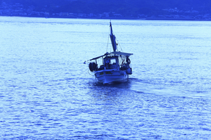 漁船の写真素材 [FYI04237310]