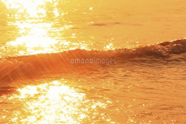 向島の海の写真素材 [FYI04237343]