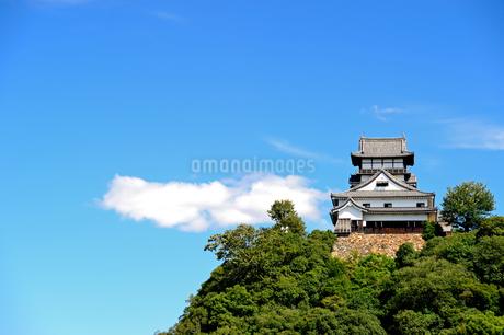 青空の犬山城の写真素材 [FYI04237423]