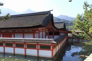 厳島神社の写真素材 [FYI04237526]