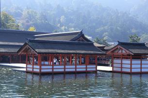 厳島神社の写真素材 [FYI04237533]