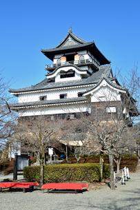 国宝犬山城の写真素材 [FYI04237670]