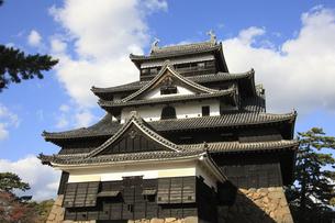 松江城の写真素材 [FYI04238523]