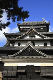 松江城の写真素材 [FYI04238526]
