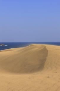 鳥取砂丘の写真素材 [FYI04238765]