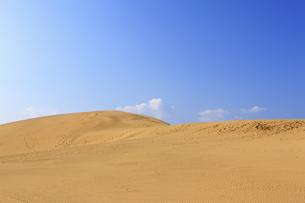 鳥取砂丘、青空の写真素材 [FYI04238810]