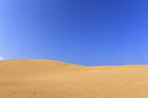 鳥取砂丘、青空の写真素材 [FYI04238811]