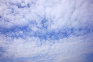 空の写真素材 [FYI04238862]