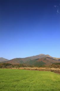 秋の蒜山の写真素材 [FYI04239029]