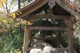 三仏寺の写真素材 [FYI04239146]