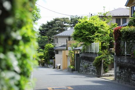 石神井町の住宅街の写真素材 [FYI04241402]