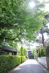 石神井町の住宅街の写真素材 [FYI04241403]