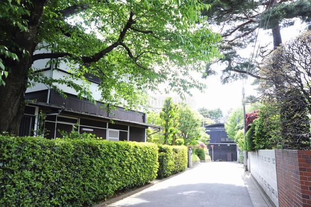 石神井町の住宅街の写真素材 [FYI04241405]