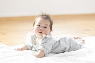 明るい部屋の中でうつ伏せの乳児の写真素材 [FYI04243085]