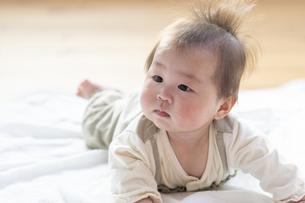 明るい部屋の中でうつ伏せの乳児の写真素材 [FYI04243102]