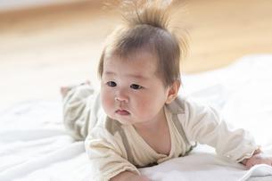 明るい部屋の中でうつ伏せの乳児の写真素材 [FYI04243103]
