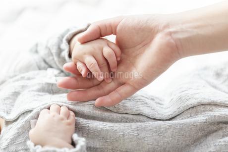 明るい部屋の中で赤ちゃんの手を握る母親の手の写真素材 [FYI04243270]
