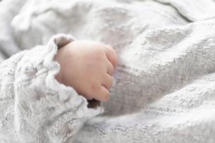 明るい部屋の中で寝転ぶ赤ちゃんの手の写真素材 [FYI04243340]