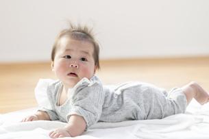 明るい部屋の中でうつ伏せの乳児の写真素材 [FYI04243954]