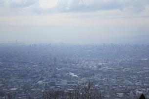 大阪平野の写真素材 [FYI04244580]