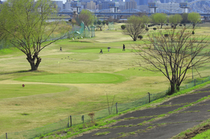 淀川の河川敷公園のゴルフ場の写真素材 [FYI04246728]