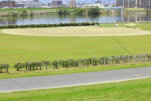 淀川の河川敷公園の野球場の写真素材 [FYI04247667]