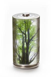 エコ電池とブナの環境イメージの写真素材 [FYI04252694]