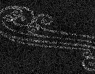 波模様のイラスト素材 [FYI04253642]