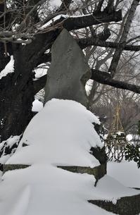 厳冬の松前・松前公園 青木郭公顕彰碑の写真素材 [FYI04254086]