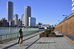 隅田川沿いの遊歩道と勝鬨橋のイラスト素材 [FYI04254177]