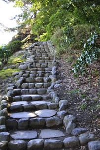浜離宮恩賜庭園・富士見山への石段のイラスト素材 [FYI04254198]