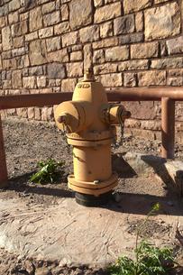 黄色く塗られた消火栓の写真素材 [FYI04254332]