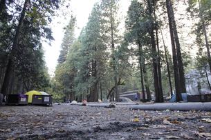 朝のキャンプ4(フォー)の写真素材 [FYI04254676]
