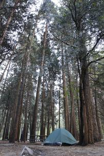 朝のキャンプ4(フォー)の写真素材 [FYI04254679]