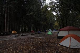 朝のキャンプ4(フォー)の写真素材 [FYI04254697]