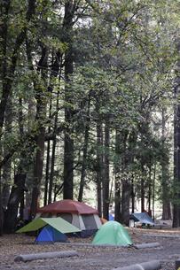 ヨセミテ国立公園内のキャンプ場の写真素材 [FYI04254778]