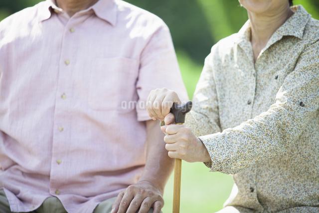 杖を握るシニアの写真素材 [FYI04255438]