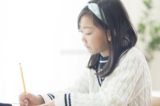 勉強する女の子の写真素材 [FYI04256409]