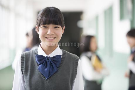笑顔の生徒の写真素材 [FYI04258084]