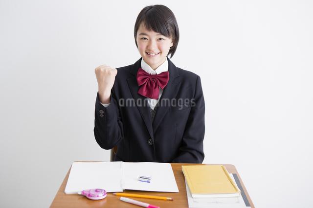 勉強する女子高生の写真素材 [FYI04258853]