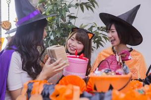 ハロウィンパーティーをする女性たちの写真素材 [FYI04260491]